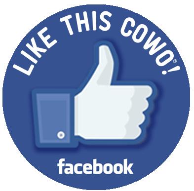 Facebook Coworking Novara